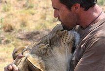 Kevin Richardson & his Lions