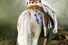 Native American Horse Art