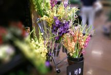 Floral Display / Floral display fixtures for store.