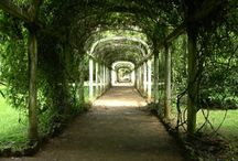 Secret Garden / by Keri Leslie