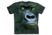 Funny T Shirts / by Annie Frank