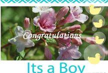 Bilder / Fotos Geburt Birth Boy / Junge - Legakulie / Sie finden auf dieser Seite #http://kostenlose-fotos-bilder-sprueche-legakulie.de/ #lizenzfreie, weil von mir selbst fotografierte und verschönerte #Bilder, kostenlos zum Download. #http://kostenlose-fotos-bilder-sprueche-legakulie.de/impressum-agb.html