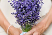 Lavender Wedding / It is so much more than just a scent. Have fun browsing through our collection of lavender-themed wedding! #Wedding #Lavender