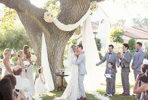 OVI Wedding