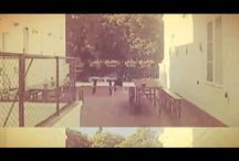 The Hostel - Videos / Just press play :)