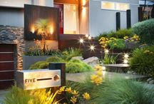 Garden layout in front of modern, chic and functional house