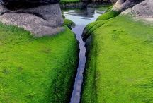 Travel ~ Iceland