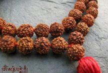 Rudraksha Japa Mala cuenta de manos para reino y yoga