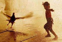 Rain and People / Umani e animali