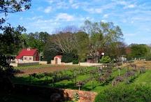 Farms, Gardens & Such / by Karmic Visions LLC