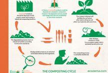 Ecozema infographics