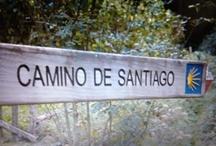 [buen camino] / Camino de Santiago