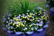 Flores en neumaticos