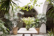 Indoor Atrium gardens