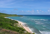 Favorite Beaches We've Enjoyed / by Vicky Murrell