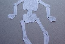 H01 Human body