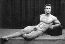 Gay-Muskel