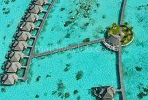 Ayada Maldives /  Önemli dalış bölgelerine yakınlığıyla bilinen Ayada aynı zamanda adanın etrafında yoğun mercanlar ile çevrilmiştir. Şnorkel ile dalış için mükemmel imkan sağlayan Villalar son derece keyifli ortam sağlamaktadır. Tesis Hakkında Daha Detaylı Bilgi için; http://www.maldiveclub.com/maldivler-otelleri/ayada