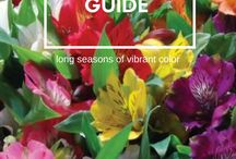 Planting Guides - Learn How to Grow Everything!