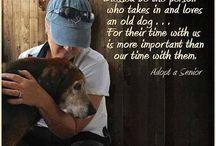 LOVE ANIMALS!!!!