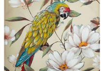Cuadros de Animales y Plantas Tropicales / Avance de Nueva Temporada. Óleos de pájaros y plantas tropicales. Disponibilidad a partir de Agosto.