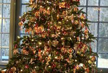 Christmas trees / by Vanessa Brinon