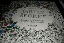 Jardin secret : carnet de coloriage & chasse au trésor anti stress
