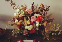 Autumn photoshoot / Ideas