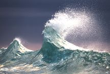 wave ola