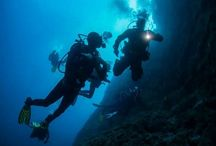 Scuba Diving / Scuba Diving is something more than sport.