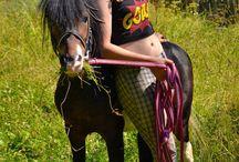 Красота - страшная сила / лошади и люди