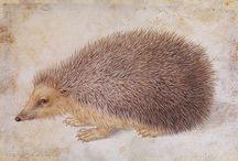 ART ~ Albrecht Dürer (1471-1528) Német reneszánsz artist