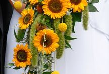 Wedding and Party Flowers / flower ideas and arch decor for my 20 year vow renewal ceremony