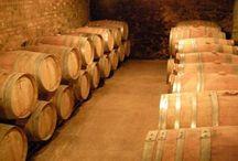 Escapadas de enoturismo / Conoce cada zona vitivinícola a través de la degustación de sus vinos y la visita a bodegas y viñedos. Aprende sobre el proceso de elaboración del vino y conoce en primera persona la arquitectura de las bodegas. ¿Apasionado del vino? ¡Esta es tu escapada!