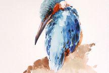 birds paint