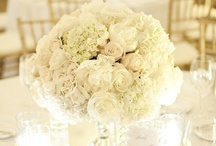 Sapphire Blue and White Wedding / Wedding Flowers, #weddingflowers, #weddingcenterpieces, #weddingfloraldesigns