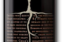 Wine / Wine labels and typo