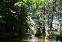 Rzeka Dajna / Szlak kajakowy rzeką Dajna umożliwia odbycie podróży kajakiem od Piecek, poprzez Mrągowo aż do Świętej Lipki.