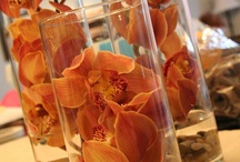 Fall Wedding Centerpieces / Fabulous examples of fall wedding centerpieces that are the perfect choice for your fall wedding. / by Diane Castro