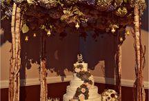 COMPASS {woodland wedding} / Woodland wedding inspiration, Westcoast style.  Rich, textured, nature, abundance.  Giant ferns, cedar trees, moss and logs.