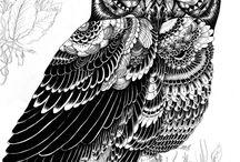 Pen&Ink Illustrations