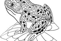 Coloring Pages - Animals Misc