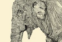 Elephants  / by Amber Bloem