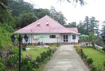 Luxury Cottage Rentals in Shimla