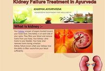 KIDNEY TREATMENT TREATMENT IN AYURVEDA