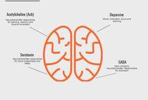neurotransmiter