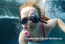Underwater Cameras / by Lisa Howard
