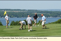 Bonavista State Park Golf Course / PARKS IN THE FINGER LAKES REGION OF NEW YORK--Bonavista State Park Golf Couse is located near Ovid in Seneca County overlooking the east side of Seneca Lake. The 250-acre park is run as a par-36, 9-hole golf course but also offers wildlife watching, cross-country skiing and snowshoeing. For more information about this park and a course map, see: http://ilovethefingerlakes.com/recreation/stateparks-bonavista.htm