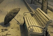 Benches - All Seasons / by Victoria Whitney