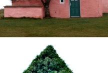 Şahane evler